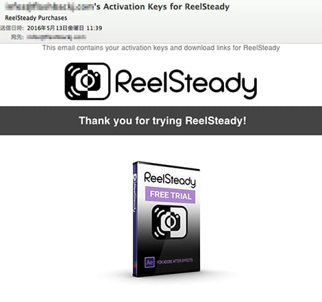 Reelsteady After Effects 2019